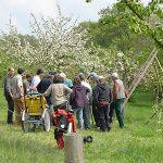 SOS-Projekt Jugendwaldheim Steinmühle
